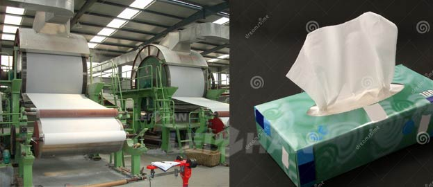 toilet and facial tissue paper manufacturing plant