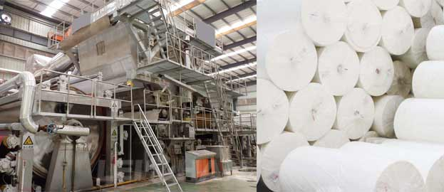 how to choose the raw material to produce toilet paper