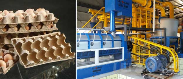 Egg Tray Production Line Machine Delivery